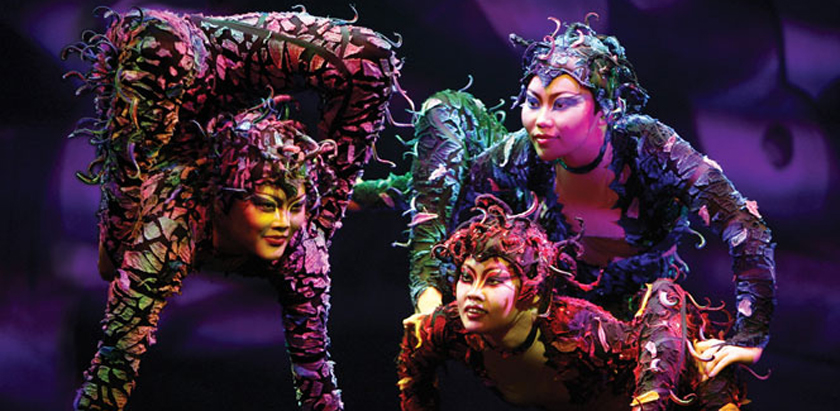 Roving Cirque Performers